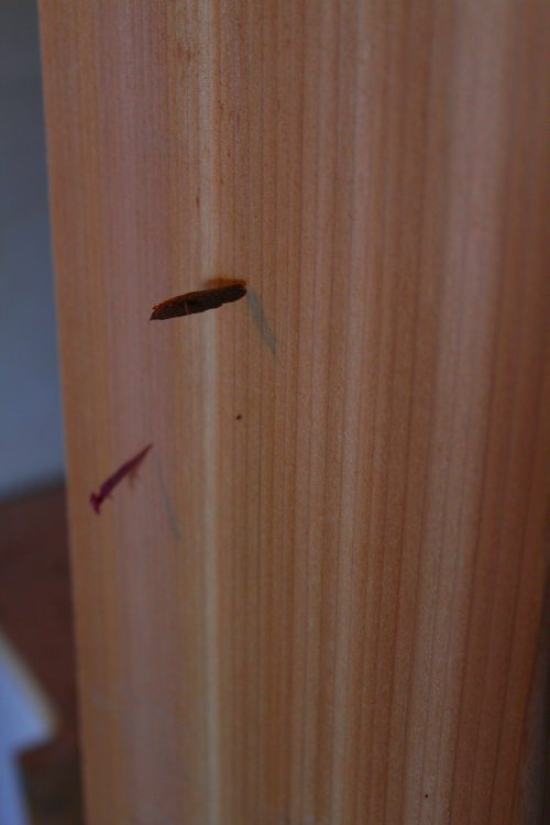 router debris in cedar
